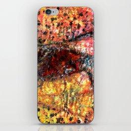 Sedimentary Rock Abstract iPhone Skin
