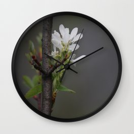 Twig and Blossom Wall Clock