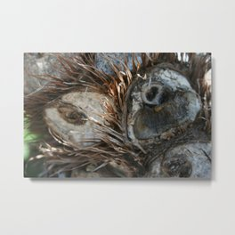 Owly Natural DP170707e Metal Print