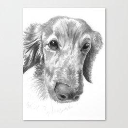 Dogface Canvas Print