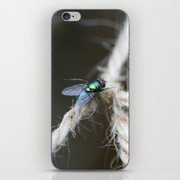 Blue Bottle Fly On Garden Twine iPhone Skin