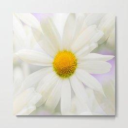 Daisy Flower Bouquet Pastel Color Background #decor #society6 #buyart Metal Print