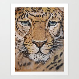 Chinese Leopard; Drawing Art Print
