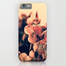 Embers Slim Case iPhone 6s