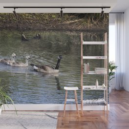 A Mother and Her Three Goslings Wall Mural