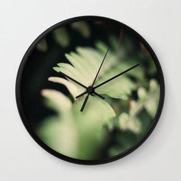 Blurred Close Up Of Fern Leaf Wall Clock
