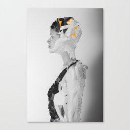 R_ Canvas Print