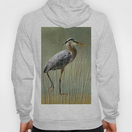 Great Blue At The Beach Hoody
