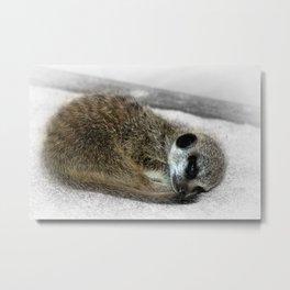 Sleepy Head Metal Print