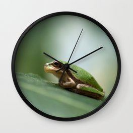 Mediterranean Tree Frog - Hyla meridionalis 8203 Wall Clock