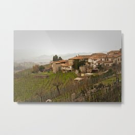 vineyard in veneto Metal Print