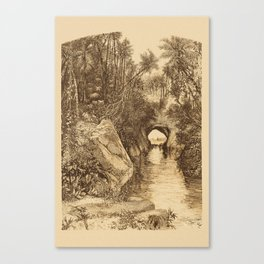 Into The Amazon Canvas Print