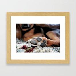 """paw prints"" Framed Art Print"