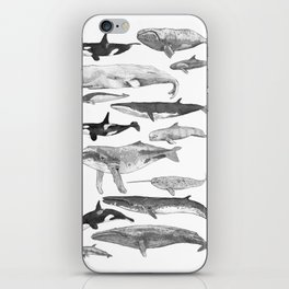 Cetology iPhone Skin