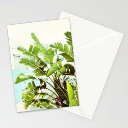 Banana Palms Stationery Cards