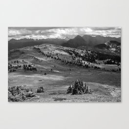 Wilderness Ahead Black-and-White Canvas Print