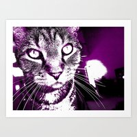 Purple Fierce Kitty Art Print