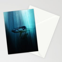 Polar migration Stationery Cards