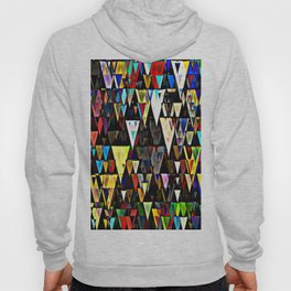 sharp down Hoody
