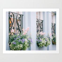 Charleston Blue and Pink Florals Art Print