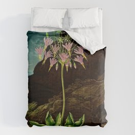 The American Cowslip Flower : New Illustration Of The Sexual System Comforters