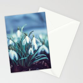 Spring 2019 Stationery Cards