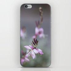 Little Pink Flower iPhone & iPod Skin