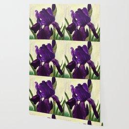 Purple Iris DP150530 Wallpaper