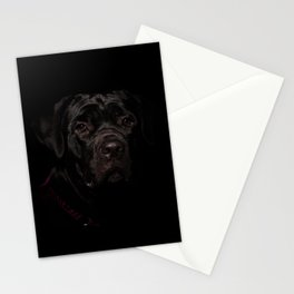 Cane Corso Puppy Low Key Animal / Dog Photograph Stationery Cards