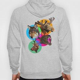 Animal Collective Hoody