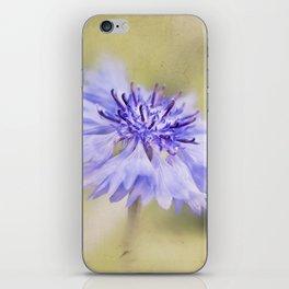 Wild Cornflower iPhone Skin