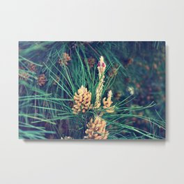 What could nature wear today II? Metal Print