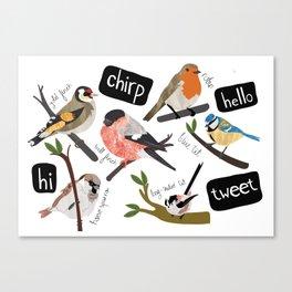 British Garden Birds Canvas Print