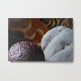 Avocado and Stone Close Up Metal Print