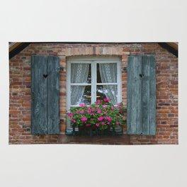 Window and Flowers Rug