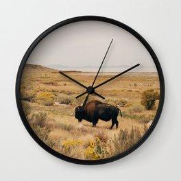 Bison Bull on Antelope Island Wall Clock