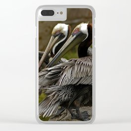 Brown Pelican Clear iPhone Case