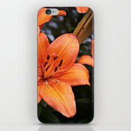 Orange Lily iPhone Skin
