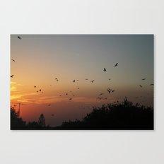 migrating birds Canvas Print