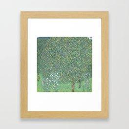 Rosebushes under the Trees Framed Art Print