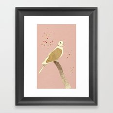 Streptopelia decaocto Framed Art Print