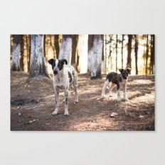 Dos Perros Canvas Print