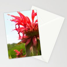 Spiked Red Flower Stationery Cards