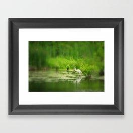 Marsh Egret 2 Framed Art Print