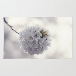 Cherry blossoms in Love - Cherryblossom Flowers Floral Rug