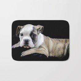 Brindle English Bulldog Puppy Looking Directly at the Camera while Laying on a Plush Black Blanket Bath Mat