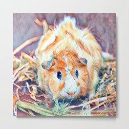 Impressive Animal - Guinea Pig 4 Metal Print