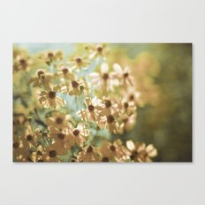 I live in the springtime Canvas Print