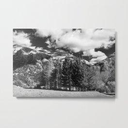 Abruzzo National Park, Italy Metal Print