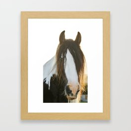 Sonny-Ben Framed Art Print